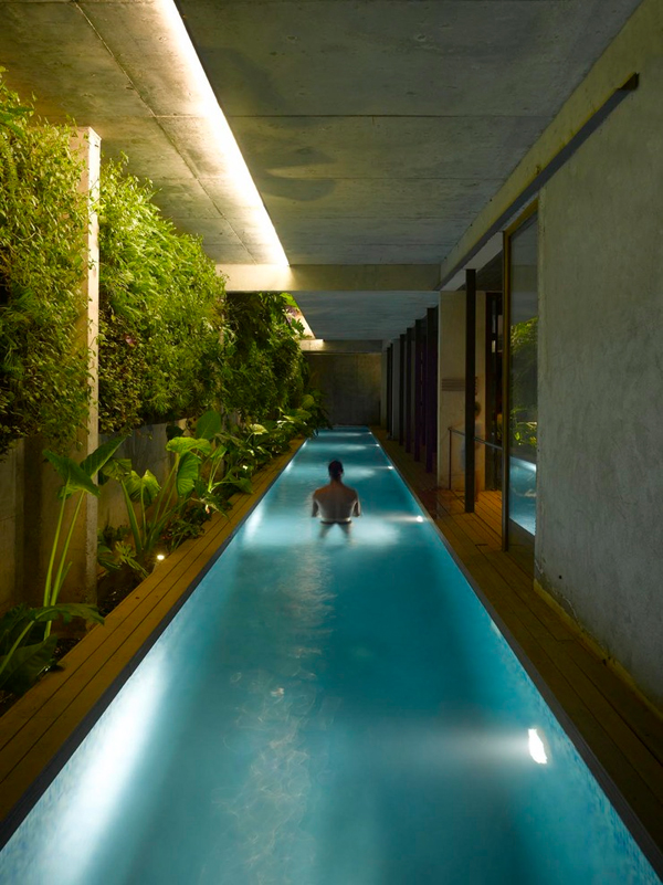 Modern Indoor Pool with Vertical Garden Wall