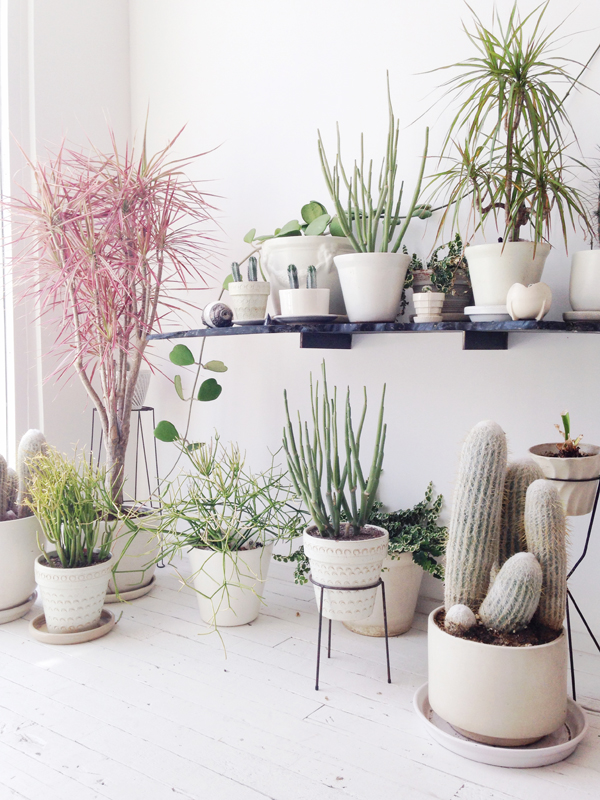 10 beautiful ways to decorate indoor plant in living room - Living room corner ideas ...