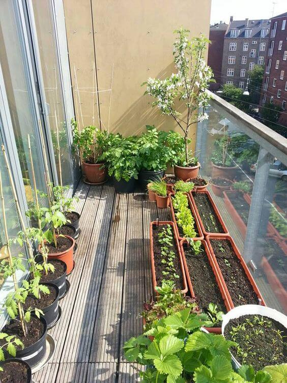 pots and planters for balcony garden